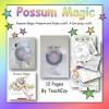 Possum Magic Craft